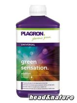 Plagron Green Sensation - Bloom Stimulator 1l #0