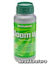 Ecolizer Bloom up - 500ml #0
