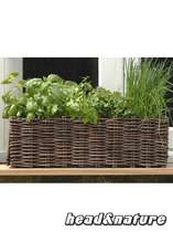 "Plant set ""Windowsill Flower Box "" natural #0"