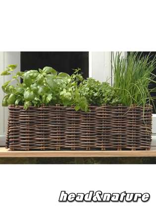 "Plant set ""Windowsill Flower Box "" natural"
