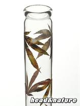Glass bong hemp leaves Multi Leaf 35cm #1