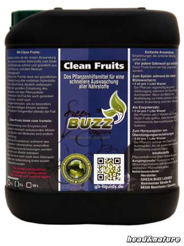 Green Buzz Clean-Fruits, 5000ml